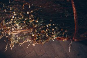 SLOT2019_07_10_Agata_Lach-53.jpg