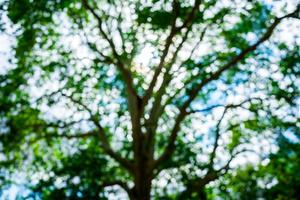 SLOT2019_07_10_Malgosia_Orechwo-02757.jpg